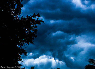Photograph - Stormy by Shannon Harrington