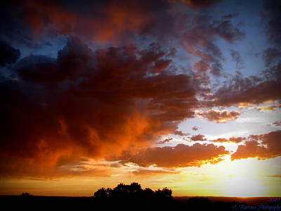 Stormy Sunset Over A Tree Canopy Art Print by Aaron Burrows
