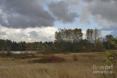 Photograph - Stormy Weather by Bill Thomson