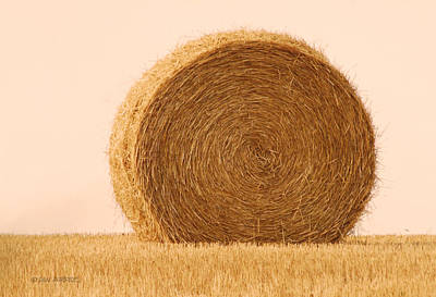 Photograph - Straw Bale by Don Durfee