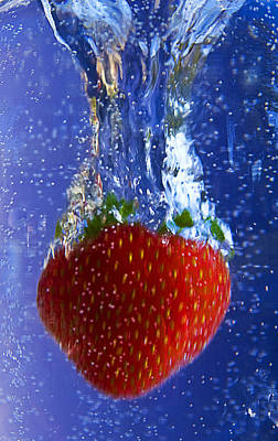Photograph - Strawberry Magic by Trudy Wilkerson