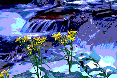 Photograph - Stream And Flowers by Zawhaus Photography