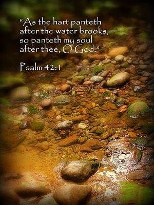 Stream Bed Psalm 42 Art Print by Cindy Wright