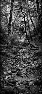 Photograph - Stream In Reelig Glen Black And White by Joe Macrae