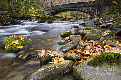 Colorful Leaves Photograph - Stream In The Great Smokie Mountain National Park by Dustin K Ryan