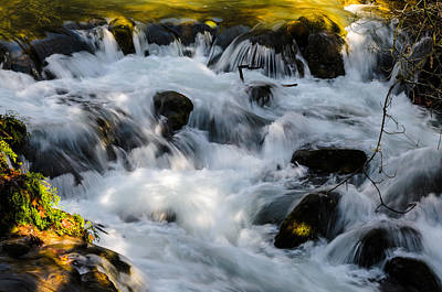 Photograph - Stream by Michael Goyberg