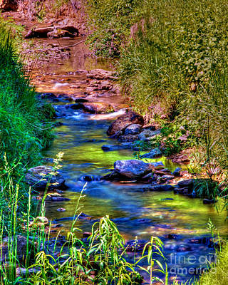 Photograph - Stream Of Color by Mark Dodd
