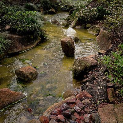 Photograph - Stream Of Consciousness by David Coblitz