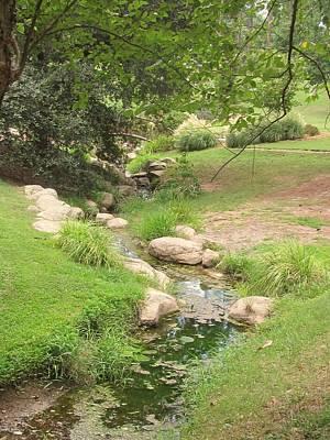 Duke Gardens Photograph - Streaming by Vijay Sharon Govender