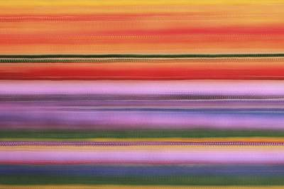 Photograph - Streams Of Color by Kate Purdy