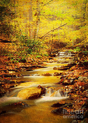 Streams Of Gold Print by Darren Fisher