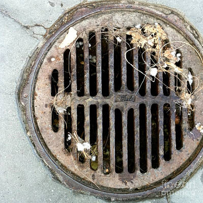 Photograph - Streets Of La Jolla 8  by Marlene Burns