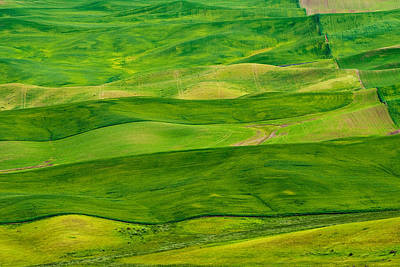 Hills Photograph - Stripes by Dan Mihai