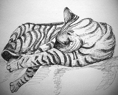 Drawing - Stripes by Mary Schiros