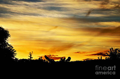 Stripey Sunset Silhouette Art Print by Kaye Menner