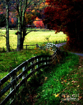 Old Country Roads Digital Art - Strolling Down The Old Country Road by Lj Lambert