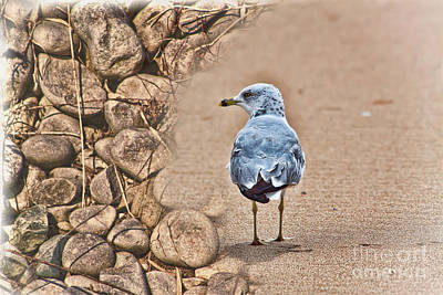 Photograph - Stronger Than Sticks And Stones by Cathy  Beharriell