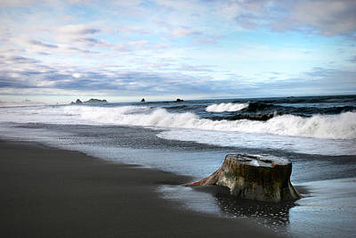 Photograph - Stump On A Beach by Anthony Jones