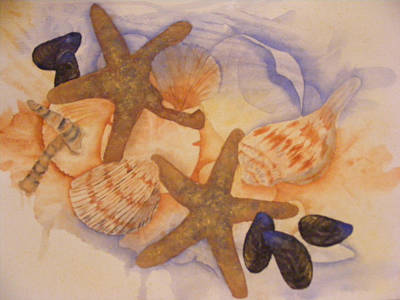Sue's Seashells Art Print