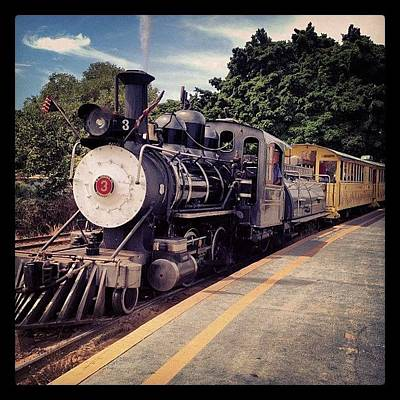 Train Photograph - Sugar Cane Train by Darice Machel McGuire