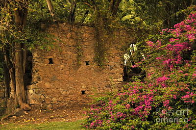 Sugar Mill Of The Past In St. Lucia Art Print