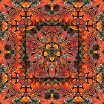 Digital Art - Sumac Autumn Kaleidoscope by Francesa Miller