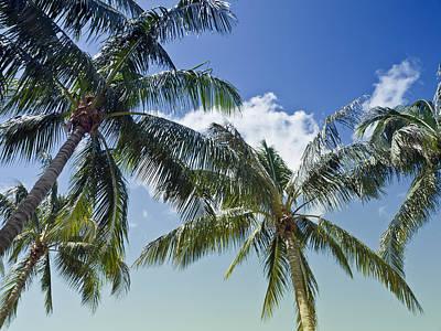 Fort Myers Beach Photograph - Summer Feeling by Melanie Viola