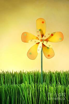 Pinwheel Photograph - Summer Fun In The Grass by Sandra Cunningham