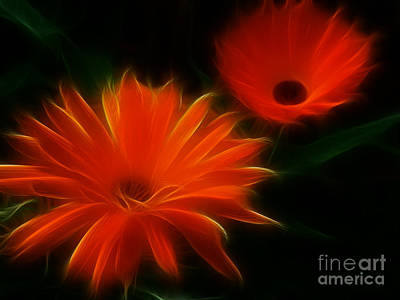 Digital Art - Summer Heat by Yvonne Johnstone