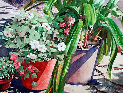 Painting - Summer Impatiens by Peter Sit
