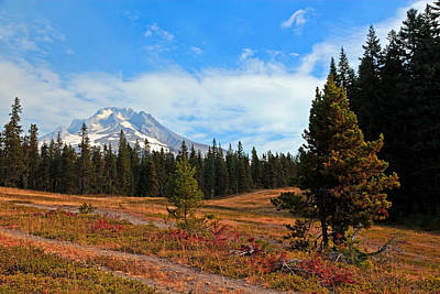Photograph - Summer On Mt. Hood by Athena Mckinzie