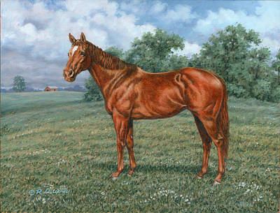 Sporthorse Painting - Summer Pasture by Richard De Wolfe