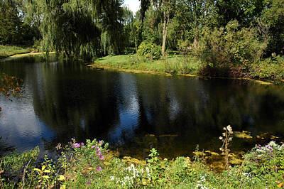 Photograph - Summer Pond Dreams by LeeAnn McLaneGoetz McLaneGoetzStudioLLCcom