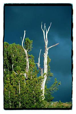 Summer Storm - Tuolumne Meadows Art Print by Noah Brooks