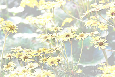 Photograph - Summer Whispers by Eena Bo