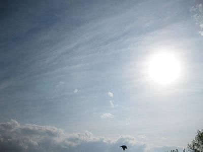 Spot Of Tea - Sun Crow Flying Clouded Sky by Charles Dancik