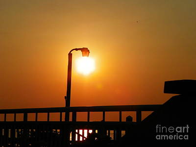 Dolphine Photograph - Sun Dock Lamp by Laurence Oliver