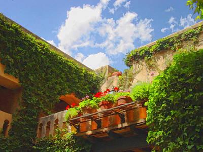 Sun-kissed Geraniums At Tlaquepaque Art Print