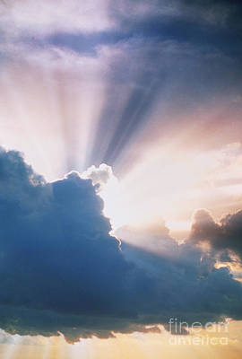 Photograph - Sun Rays by Erich Schrempp and Photo Researchers