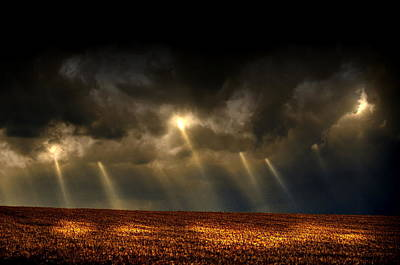 Farm Scenes Photograph - Sunbean Provision by Emily Stauring