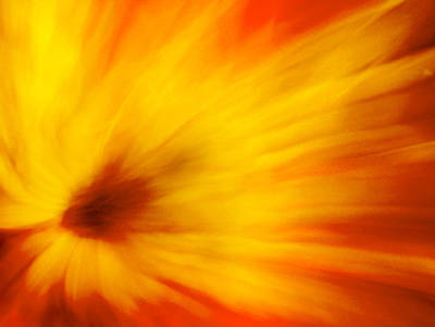 Photograph - Sunburst  by Neil Shapiro