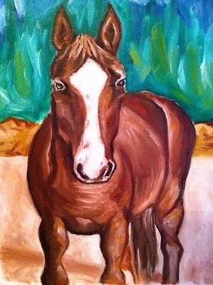 Painting - Sundance by Stephanie Reid