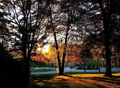 Photograph - Sundown In Stanley Park by Will Borden
