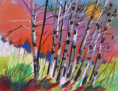 Sundown White Birches Art Print by John Williams