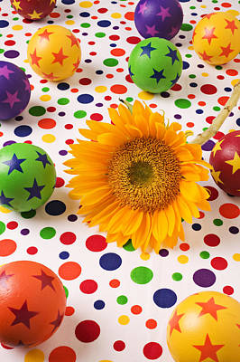 Ball Bounce Photograph - Sunflower And Colorful Balls by Garry Gay