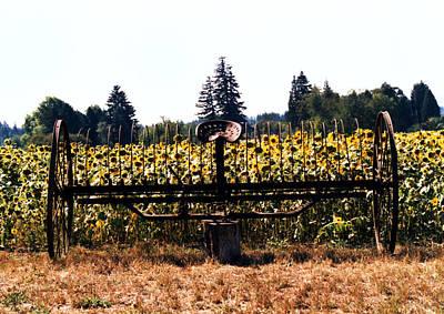 Sunflower Farm Scene Art Print by Maureen E Ritter