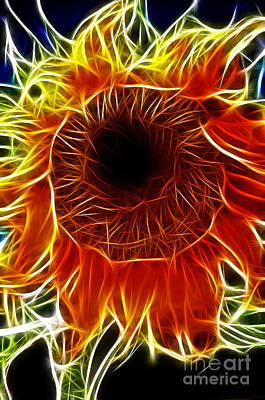 Photograph - Sunflower Fractal by Donna Greene