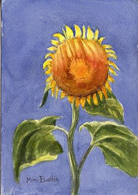 Sunflower Glowing In The Sun Art Print