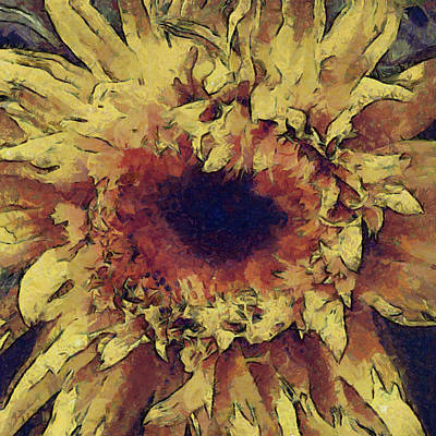 Shed Digital Art - Sunflower In Provence by Gary Little
