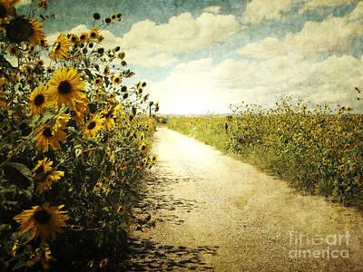 Sunflower Road Art Print
